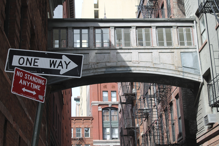 New-york-natalia-geldart-bridge-one-way