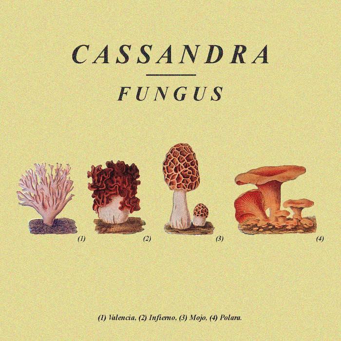 cassandra-fungus-cover